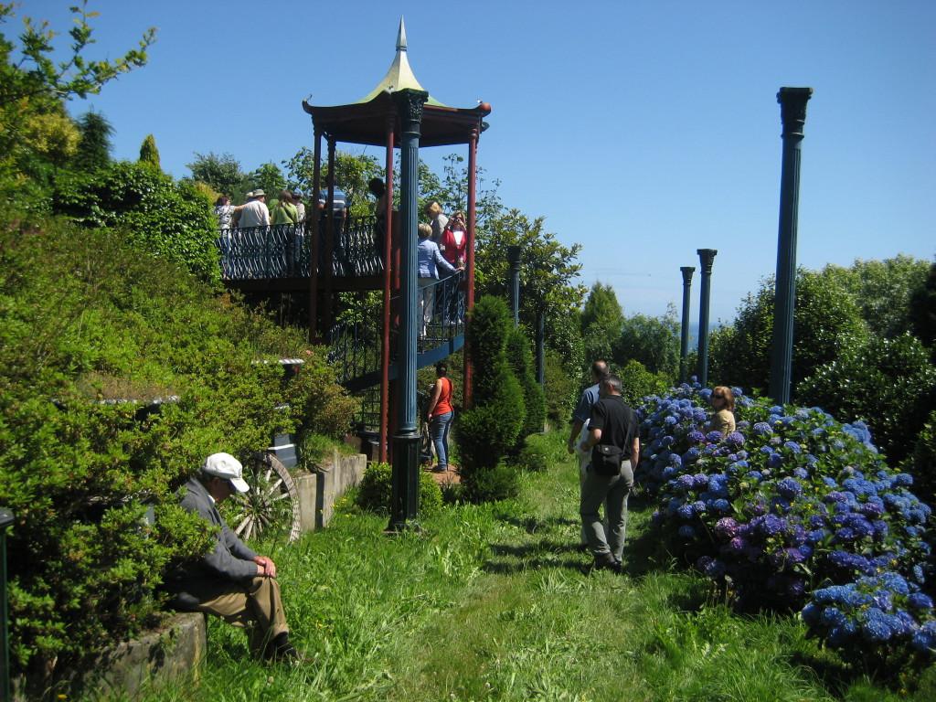 hortensias-azules-jardines-el-chano