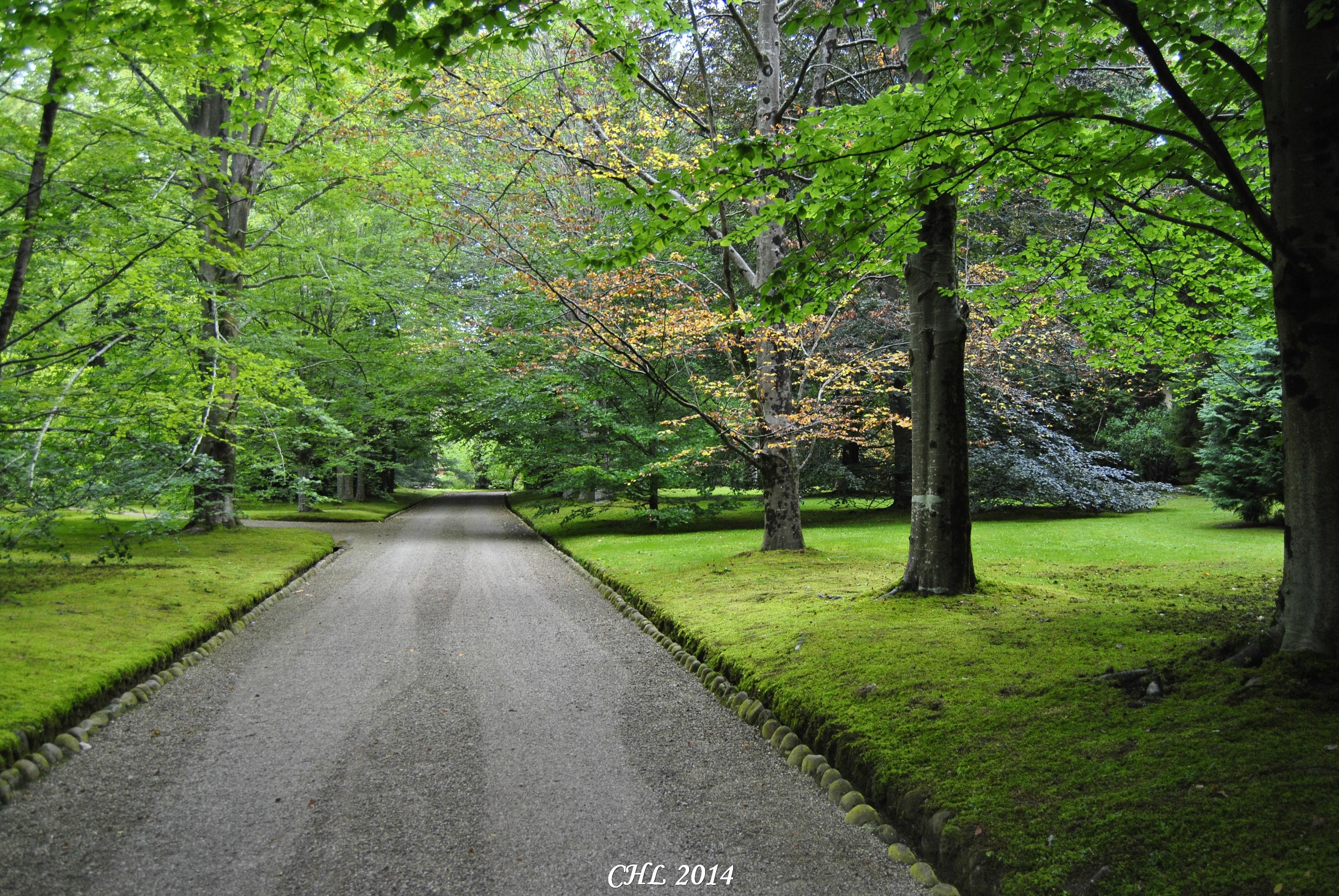 paseo-entrada-jardines-fundacion-botin