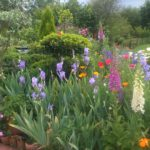 Flores de mayo
