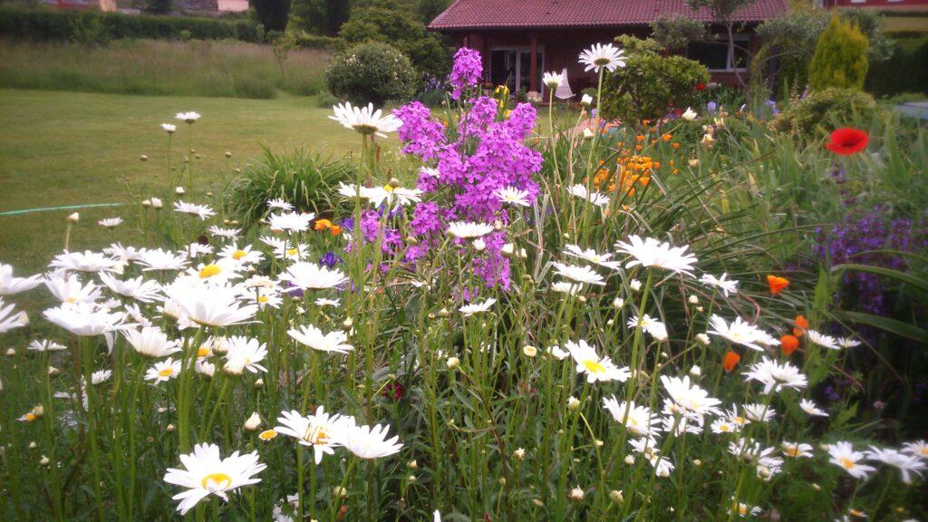 Masa de flores en Mayo