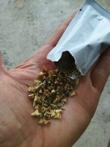 Mezcla de semillas de pradera dde flores